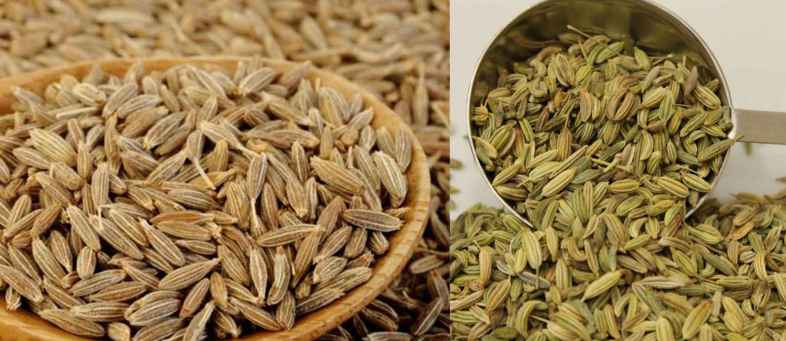 07 Oct Agriculture Current Affairs Gujarat to get the country first two Organic Spices Seed parks