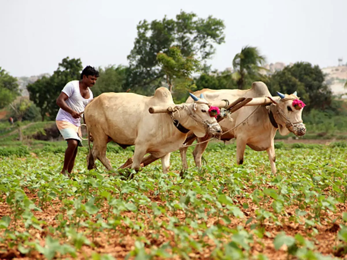 07 Oct Agriculture Current Affairs two-pm-kisan-instalments-by-september-30