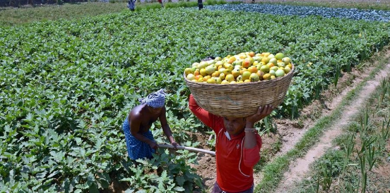 01 Oct Agriculture Current affairs, Uttar Pradesh brings policy