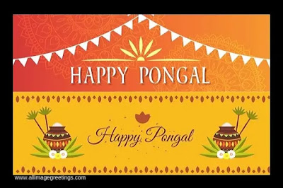 Happy Pongal Whatsapp Images DP Status & Pic