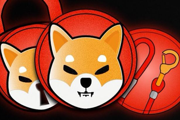 SHiba Inu Coin News: Now this cryptocurrency gets with Elon Musk! 70% increase on the first day of listing