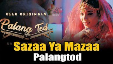 Sazaa Ya Mazaa Palang Tod Web Series