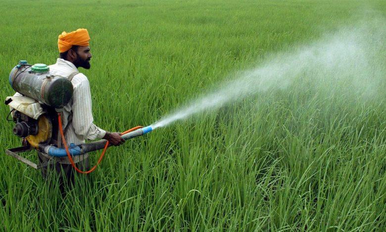 India Pesticides IPO Date