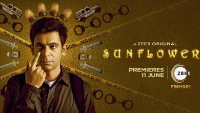 Sunflower Web Series Full Episode